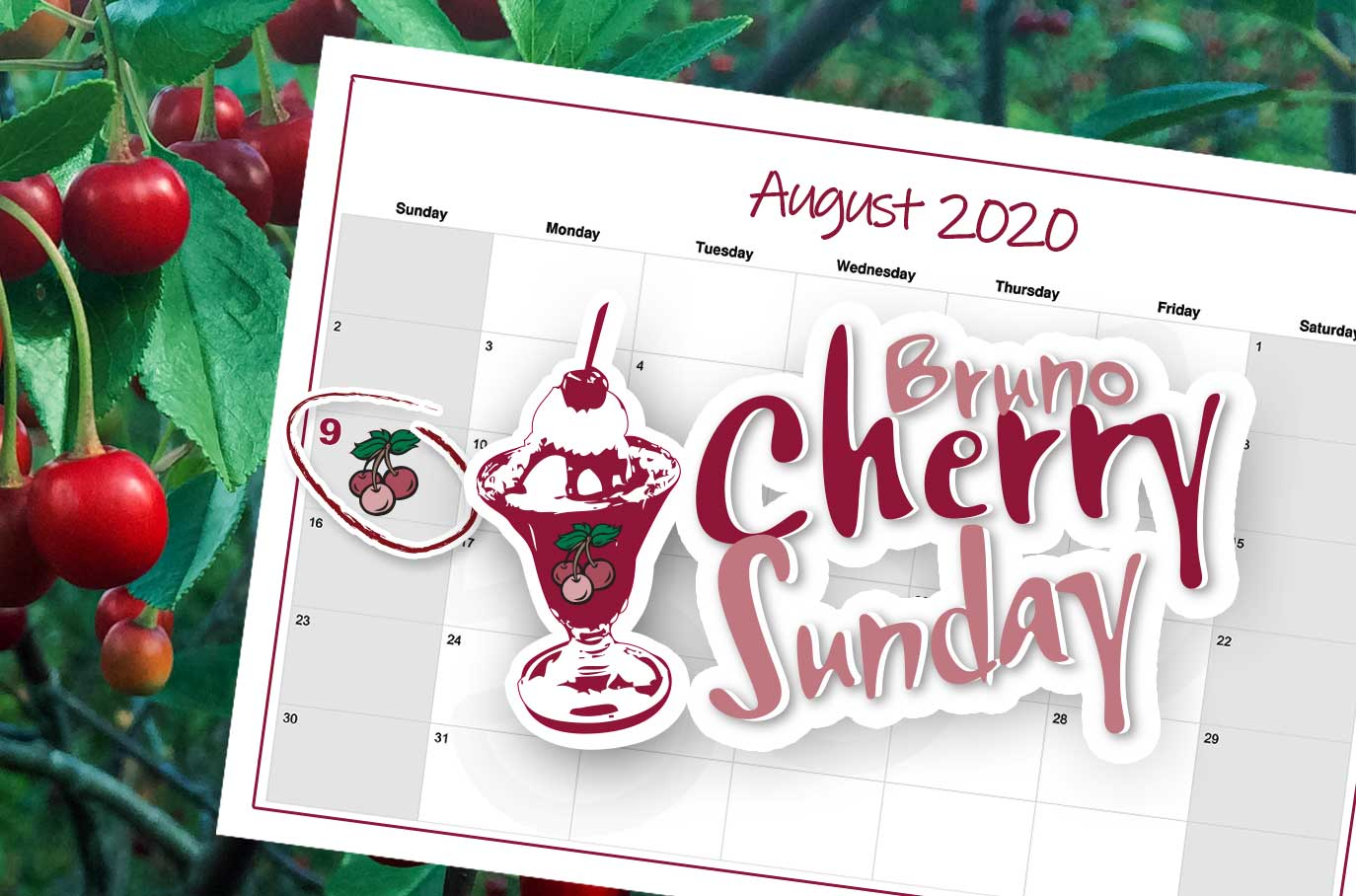 Bruno Cherry Sunday - August 9, 2020